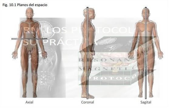 Fig.1_Planos Anatómicos